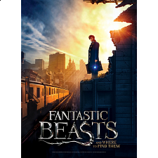 Poster Puzzle - Fantastic Beasts: New York City - Specials