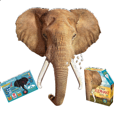 I Am Elephant -