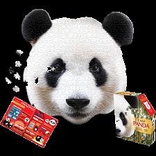 I Am Panda -