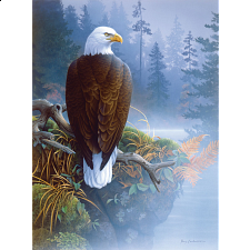 Eagle in the Mist - 1000 Pieces