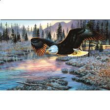 Eagle Dawn - 1000 Pieces