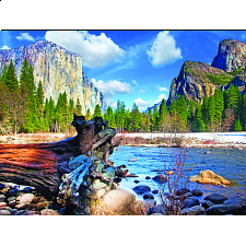 Colorluxe: Yosemite National Park, California - 101-499 Pieces