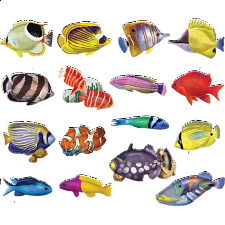 Reef Fish: 16 Mini Shaped Puzzles - Jigsaws