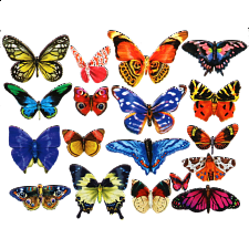 Butterflies III - 18 Mini Shaped Puzzles - 500-999 Pieces