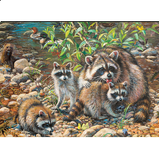 Racoon Family - Family Pieces Puzzle - 101-499 Pieces