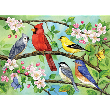Bloomin' Birds - Family Pieces Puzzle - 101-499 Pieces