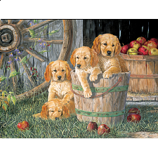 Puppy Pail - Family Pieces Puzzle - Jigsaws