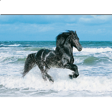 Black Horse - Search Results