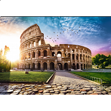 Sun-Drenched Colosseum -