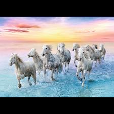 Galloping White Horses -