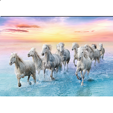 Galloping White Horses -
