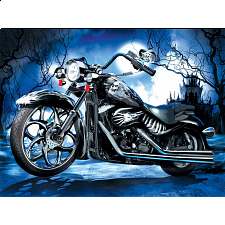 Skeleton Ride - Search Results