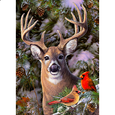 One Deer Two Cardinals - Large Piece - Search Results
