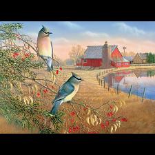 Cedar Waxwings -
