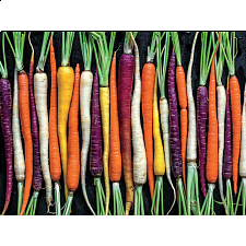 Ugly Produce: Rainbow Carrot Path - 101-499 Pieces