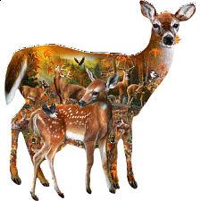 Forest Majesty - Shaped Jigsaw Puzzle - New Items