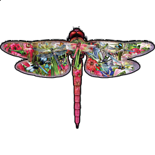 Dragonfly - Shaped Jigsaw Puzzle - Shaped