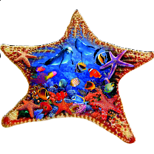 Starfish - Shaped Jigsaw Puzzle - Shaped