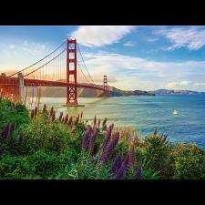 Golden Gate Sunrise - 1000 Pieces