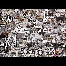 Black & White: Animals -