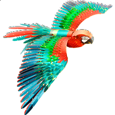 Metal Earth: Iconx 3D Metal Model Kit - Parrot (Jubilee Macaw) - Models and Kits
