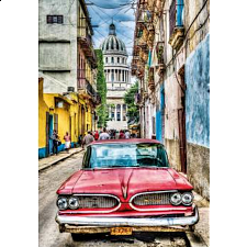 Vintage Car in Old Havana - Search Results