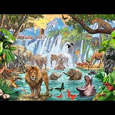 Waterfall Safari -