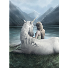 Unicorn Connection - Anne Stokes -