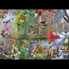 Birds of The Season -