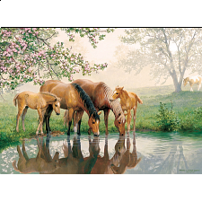 Horse Family - Family Pieces Puzzle -