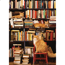 Gotham Bookstore Cats - Large Piece -