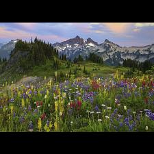 AVH Edition: Tatoosh Mountains -
