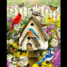 Backyard Birds -