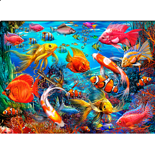 Tropical Fish -
