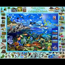 Galapagos -