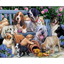 Dogs on a Bench -