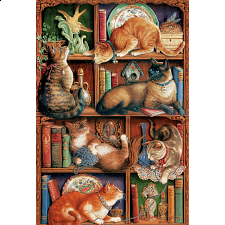 Feline Bookcase - 1001 - 5000 Pieces