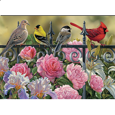 Birds on a Fence - Search Results