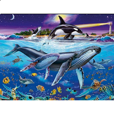 Whales - 1001 - 5000 Pieces
