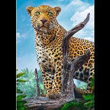 Wild Leopard -