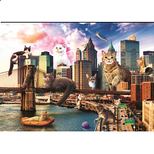Funny Cities: Cats in New York -