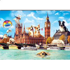 Funny Cities: Dogs in London -