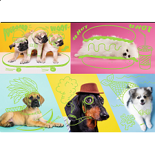 Neon Color Line: Far Out Dogs -