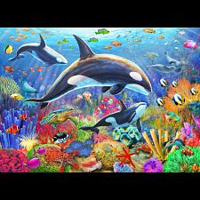Orca Fun -