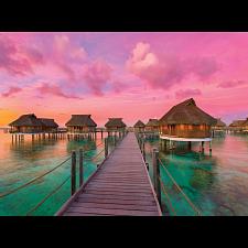 Colorful Paradise -