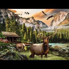 Elk Country -