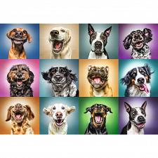 Funny Dog Portraits -