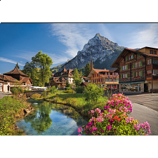 Alps in the Summer -