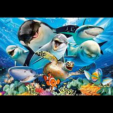 Underwater Selfies -
