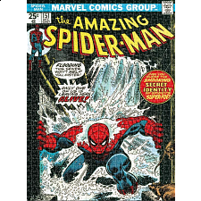 Spider-Man Cover -